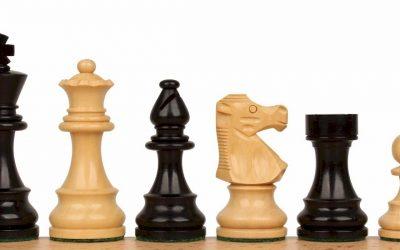 Rezultati 5. šahovskega turnirja